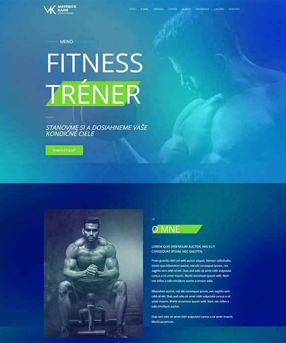 Fitness tréner [LITE] 1